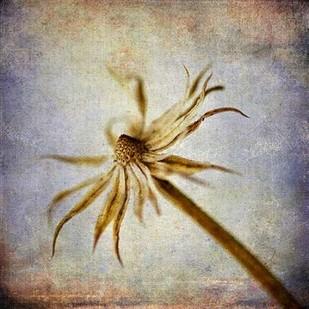 Grunge Remnants III Digital Print by Malek, Honey,Impressionism