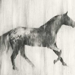 Appaloosa Study I Digital Print by Harper, Ethan,Impressionism