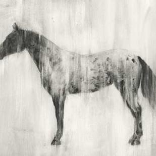 Appaloosa Study II Digital Print by Harper, Ethan,Impressionism