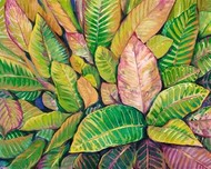 Tropical Close Up I Digital Print by OToole, Tim,Decorative