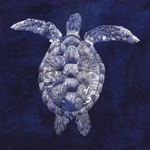 Sea Turtle Shadow I Digital Print by Popp, Grace,Decorative