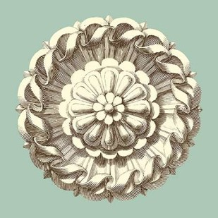 Celadon and Mocha Rosette IV Digital Print by Vision Studio,Decorative