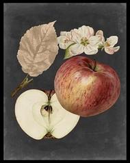 Midnight Harvest II Digital Print by Vision Studio,Realism