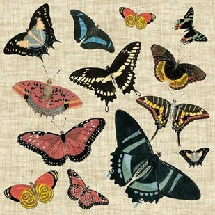Butterflies and Linen II Digital Print by Vision Studio,Decorative