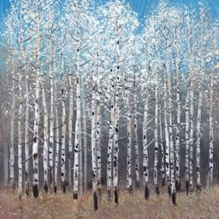 Cobalt Birches I Digital Print by Otoole, Tim,Impressionism