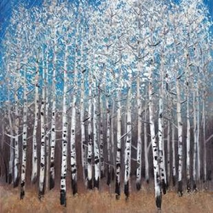 Cobalt Birches II Digital Print by Otoole, Tim,Impressionism
