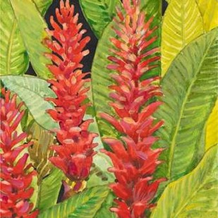 Red Tropical Flowers II Digital Print by Otoole, Tim,Impressionism