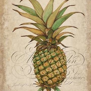Pineapple Study I Digital Print by Otoole, Tim,Decorative