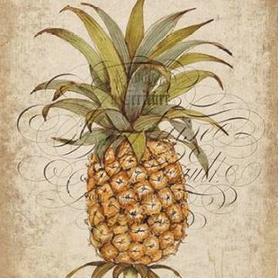 Pineapple Study II Digital Print by Otoole, Tim,Decorative