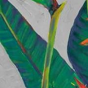Bird of Paradise Triptych I Digital Print by Otoole, Tim,Decorative