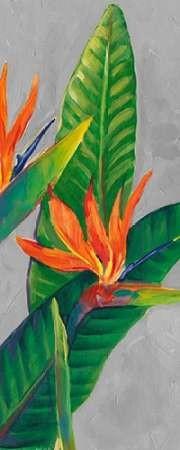 Bird of Paradise Triptych III Digital Print by Otoole, Tim,Decorative