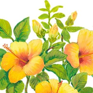 Watercolor Hibiscus I Digital Print by Otoole, Tim,Decorative