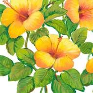 Watercolor Hibiscus III Digital Print by Otoole, Tim,Decorative