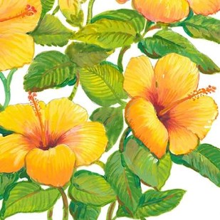 Watercolor Hibiscus IV Digital Print by Otoole, Tim,Decorative