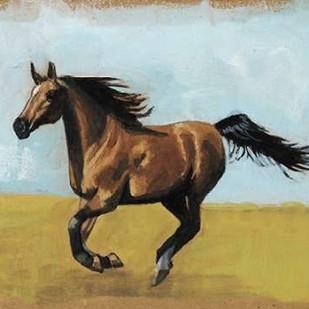 Equestrian Studies II Digital Print by McCavitt, Naomi,Expressionism