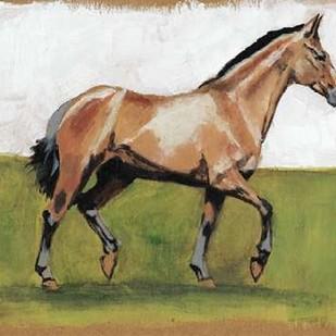 Equestrian Studies III Digital Print by McCavitt, Naomi,Expressionism