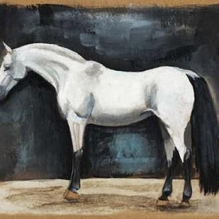 Equestrian Studies VI Digital Print by McCavitt, Naomi,Expressionism