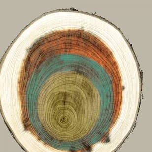 Colored Rings II Digital Print by Studio W,Decorative
