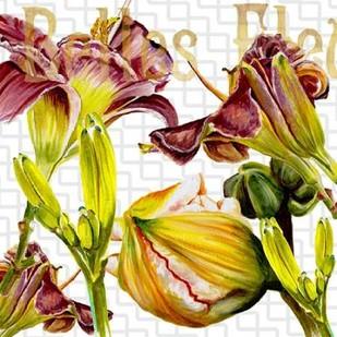 Belles Fleurs III Digital Print by Redstreake,Decorative