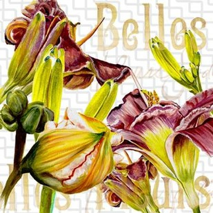 Belles Fleurs IV Digital Print by Redstreake,Decorative