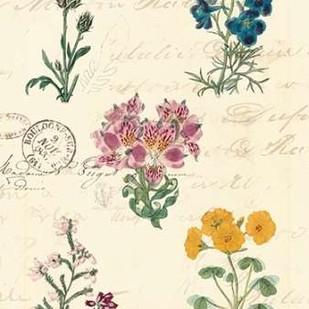 Botanical Journal I Digital Print by Vision Studio,Decorative
