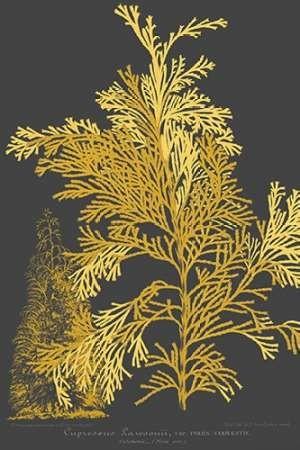 Trees & Leaves I Digital Print by Vision Studio,Decorative