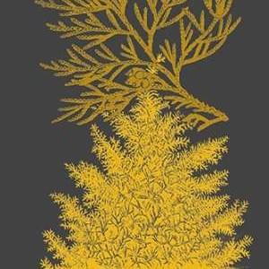 Trees & Leaves II Digital Print by Vision Studio,Decorative