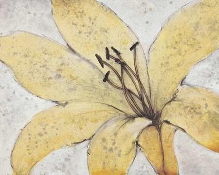 Transparency Flower II Digital Print by Otoole, Tim,Impressionism