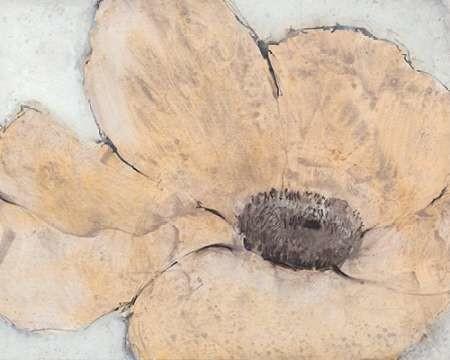 Transparency Flower IV Digital Print by Otoole, Tim,Impressionism