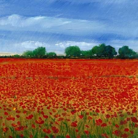 Field of Poppies II Digital Print by Otoole, Tim,Impressionism