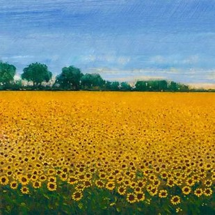 Field of Sunflowers I Digital Print by Otoole, Tim,Impressionism