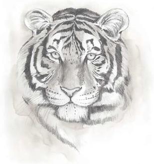 Big Cat Study II Digital Print by Popp, Grace,Illustration