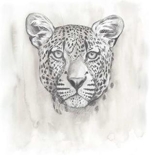 Big Cat Study IV Digital Print by Popp, Grace,Illustration