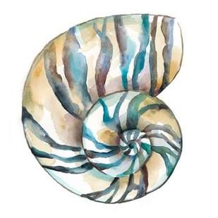 Aquarelle Shells II Digital Print by Zarris, Chariklia,Decorative