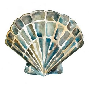 Aquarelle Shells IV Digital Print by Zarris, Chariklia,Decorative