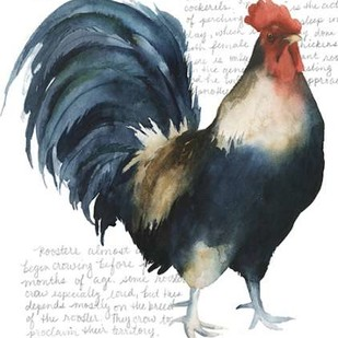 Rooster's Crow I Digital Print by Popp, Grace,Decorative