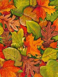 Fallen Leaves I Digital Print by Otoole, Tim,Decorative