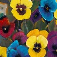 Pansy Panel I Digital Print by Otoole, Tim,Expressionism