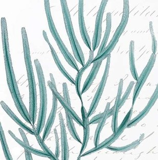 Aqua Marine I Digital Print by Hambly, Anna,Decorative