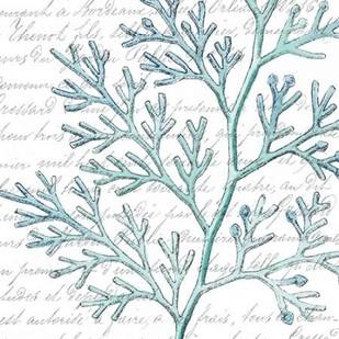 Aqua Marine IX Digital Print by Hambly, Anna,Decorative