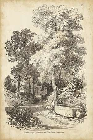 Noble Tree I Digital Print by Harding, J.D.,Illustration