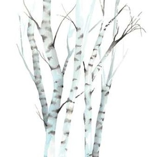 Aquarelle Birches II Digital Print by Popp, Grace,Decorative
