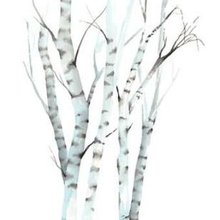 Aquarelle Birches II Digital Print by Popp, Grace,Decorative
