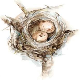 Bird Nest Study I Digital Print by Harper, Ethan,Impressionism