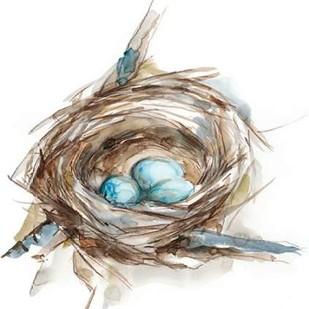 Bird Nest Study II Digital Print by Harper, Ethan,Impressionism