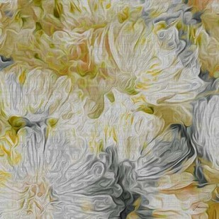 Mums in Sun I Print By Burghardt, James