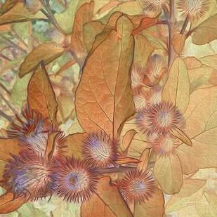 Prickley Tiles II Digital Print by Burghardt, James,Realism