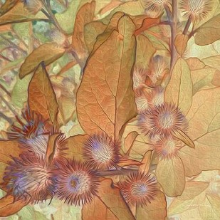 Prickley Tiles II Digital Print by Burghardt, James,Realism