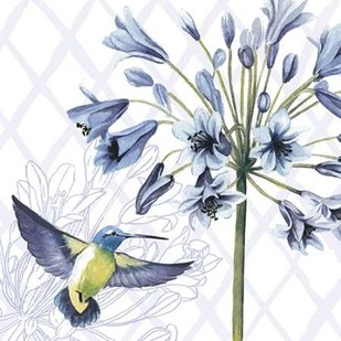 Hummingbird Dance II Digital Print by Popp, Grace,Decorative