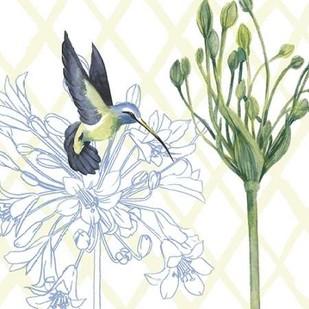 Hummingbird Dance III Digital Print by Popp, Grace,Decorative